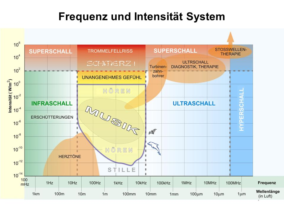 Frequenz und Intensität System