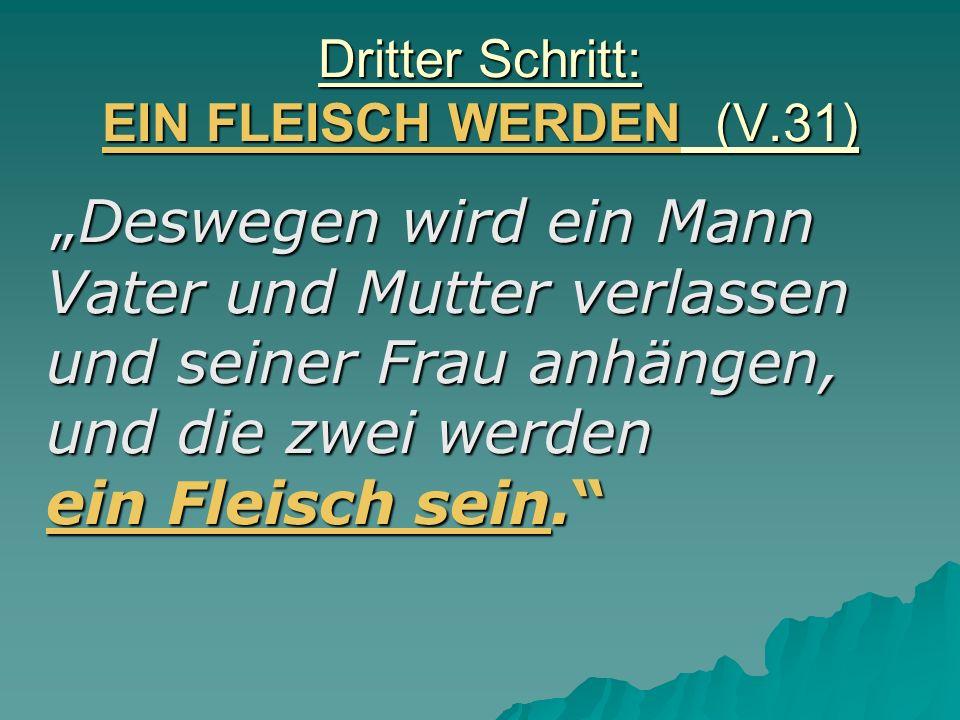 Dritter Schritt: EIN FLEISCH WERDEN (V.31)