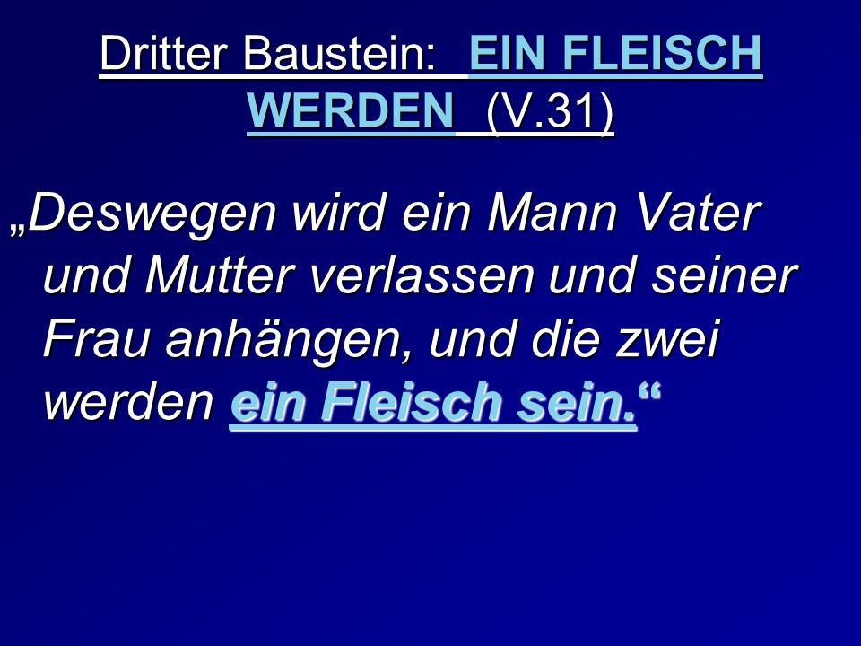 Dritter Baustein: EIN FLEISCH WERDEN (V.31)