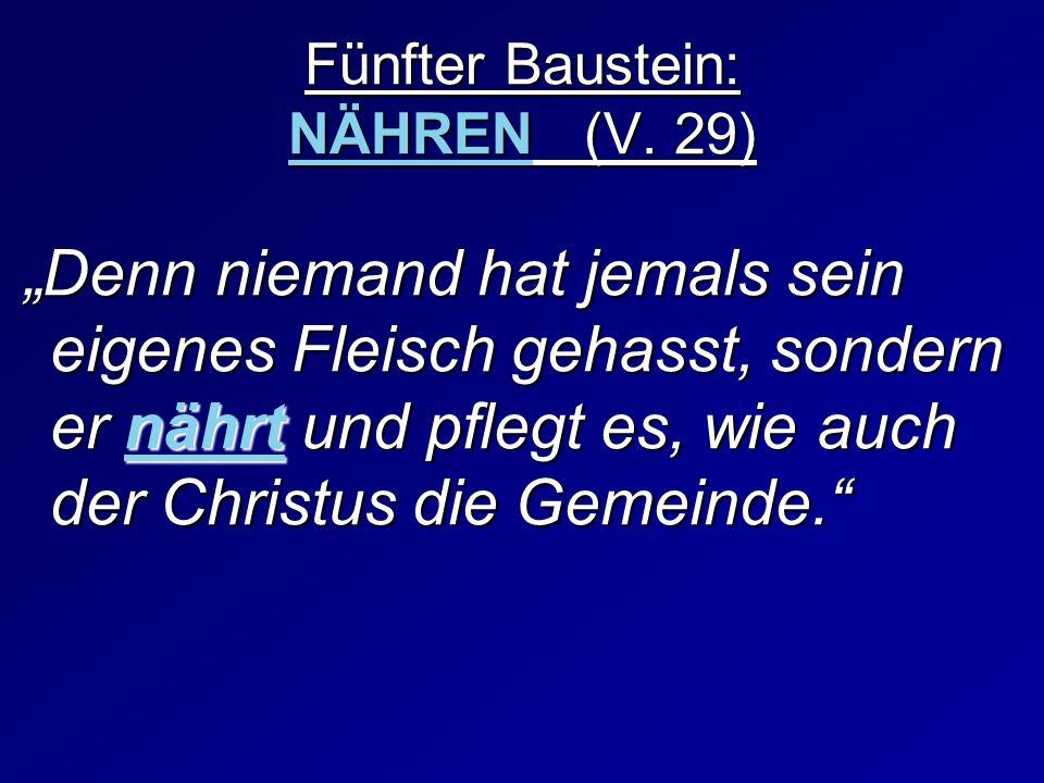 Fünfter Baustein: NÄHREN (V. 29)