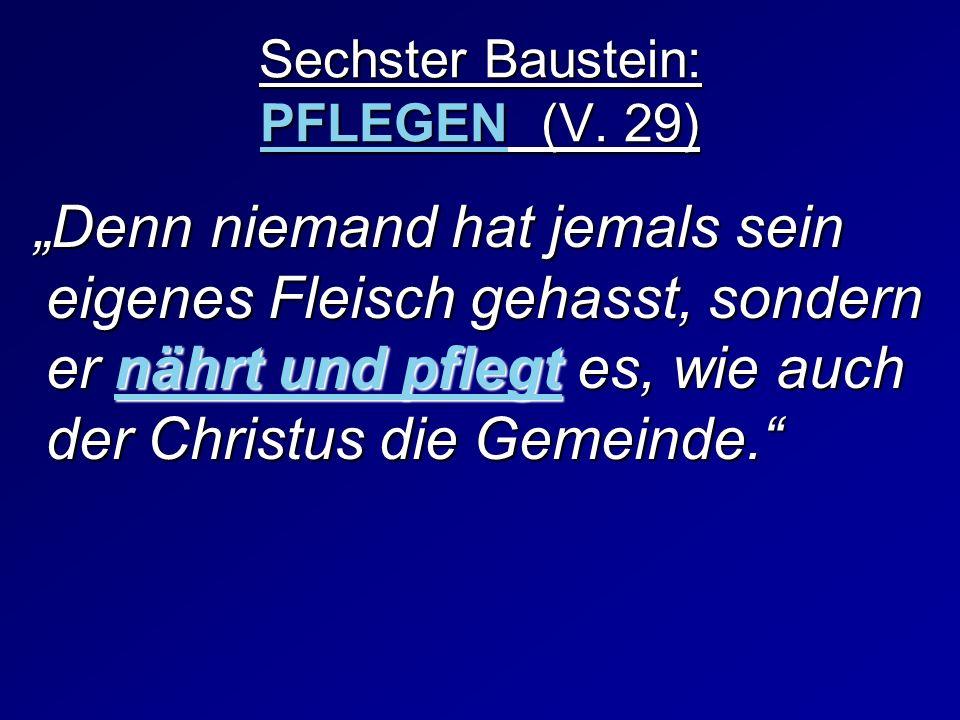 Sechster Baustein: PFLEGEN (V. 29)