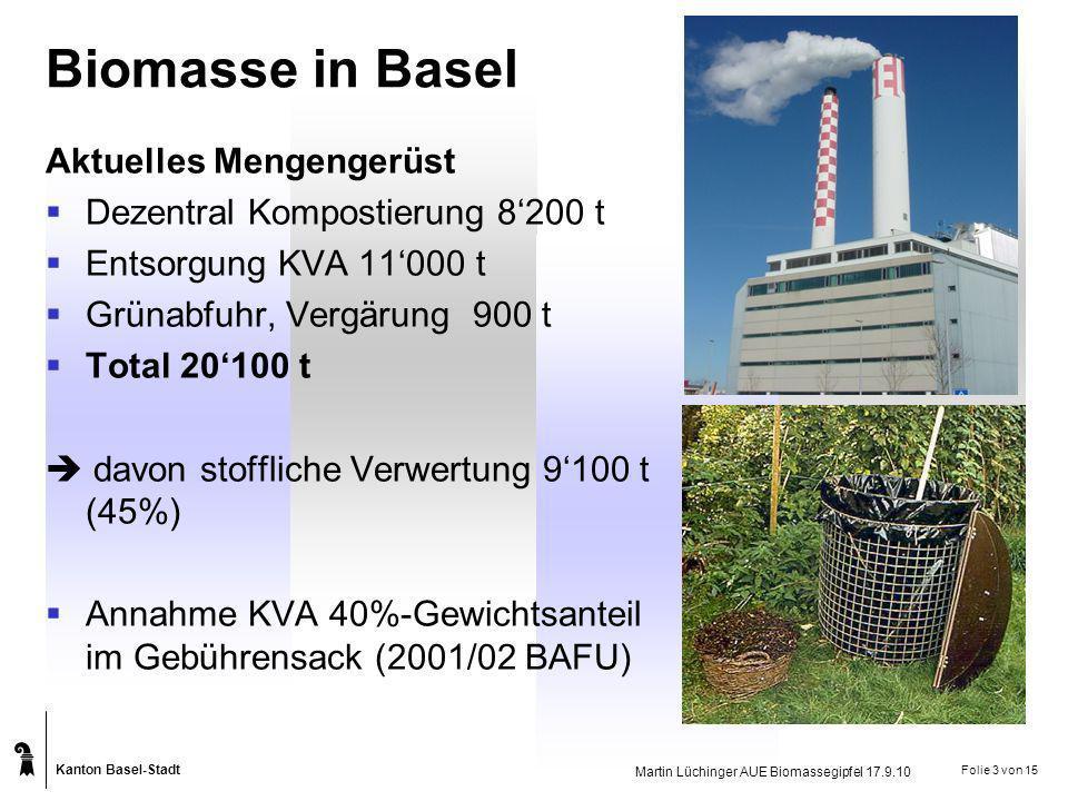 Biomasse in Basel Aktuelles Mengengerüst