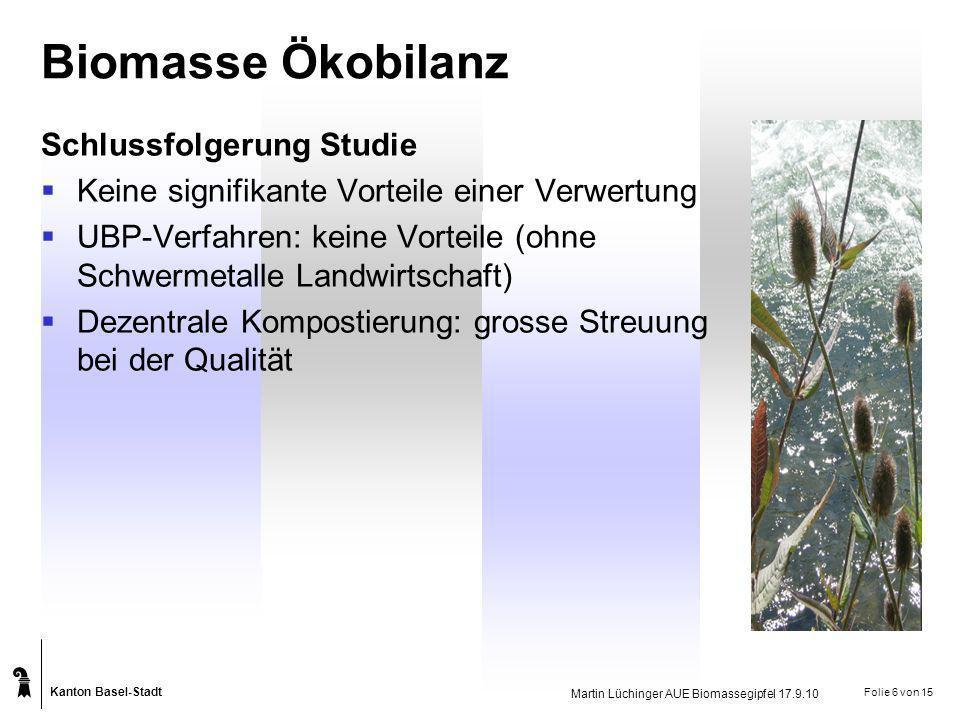 Biomasse Ökobilanz Schlussfolgerung Studie