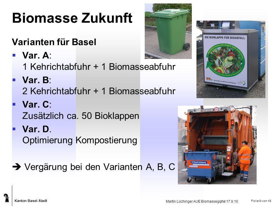 Biomasse Zukunft Varianten für Basel