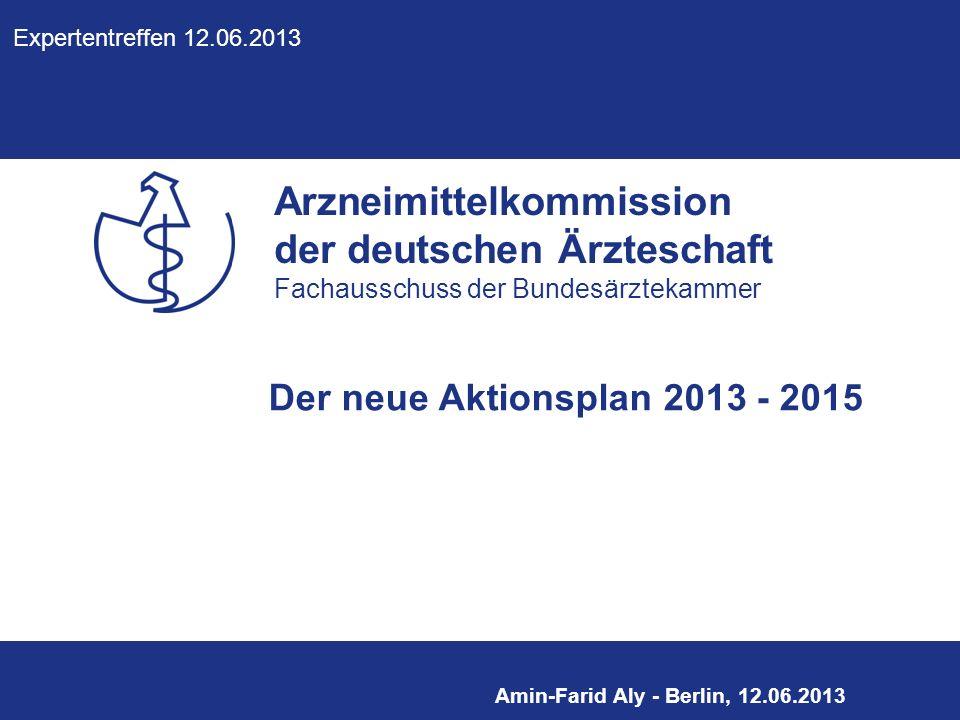Der neue Aktionsplan 2013 - 2015 Expertentreffen 12.06.2013