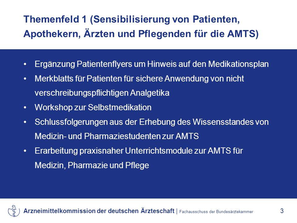 Themenfeld 1 (Sensibilisierung von Patienten, Apothekern, Ärzten und Pflegenden für die AMTS)