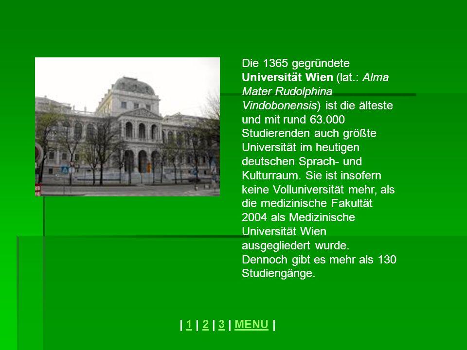 Die 1365 gegründete Universität Wien (lat