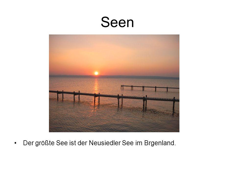 Seen Der größte See ist der Neusiedler See im Brgenland.