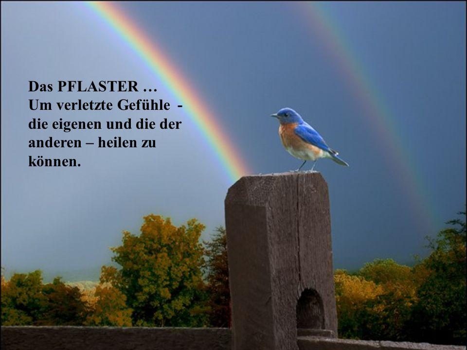Das PFLASTER … Um verletzte Gefühle - die eigenen und die der anderen – heilen zu können.