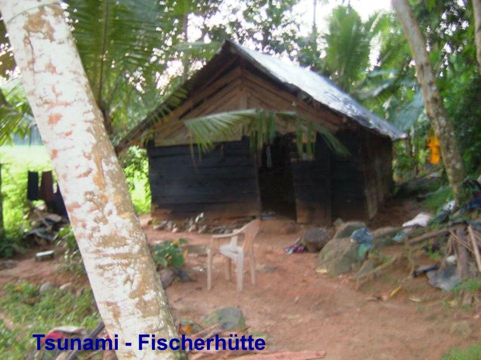 Tsunami - Fischerhütte