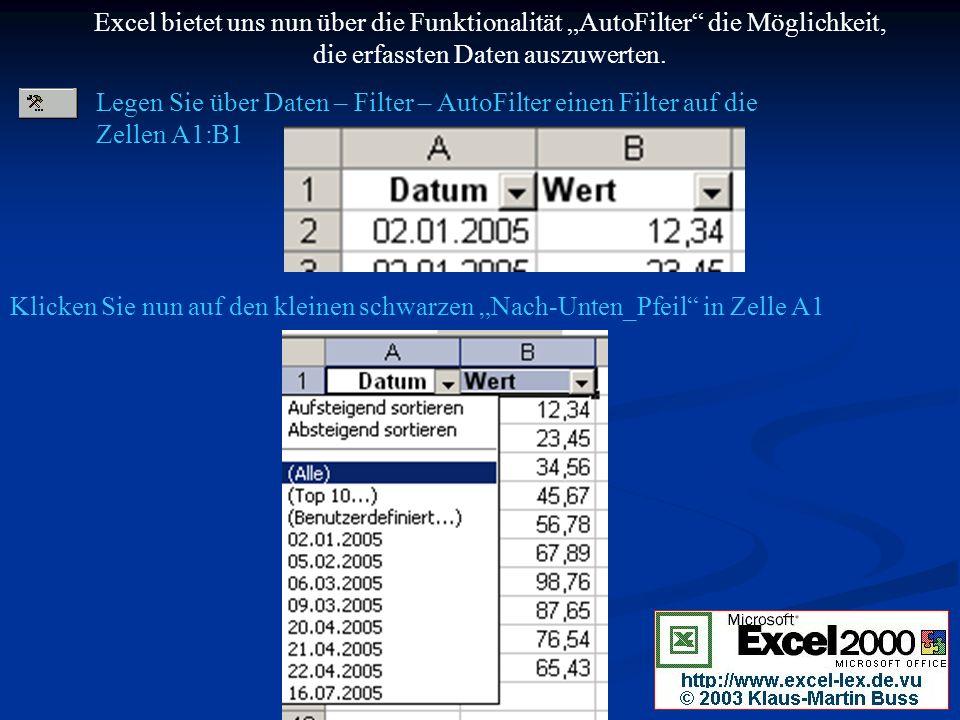 """Excel bietet uns nun über die Funktionalität """"AutoFilter die Möglichkeit, die erfassten Daten auszuwerten."""