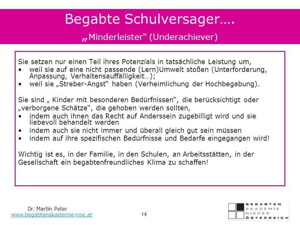 """Begabte Schulversager…. """"Minderleister (Underachiever)"""