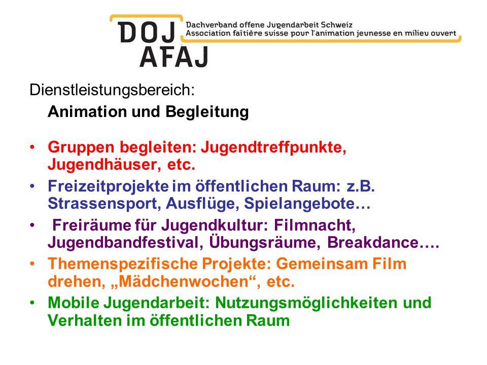 Dienstleistungsbereich: Animation und Begleitung