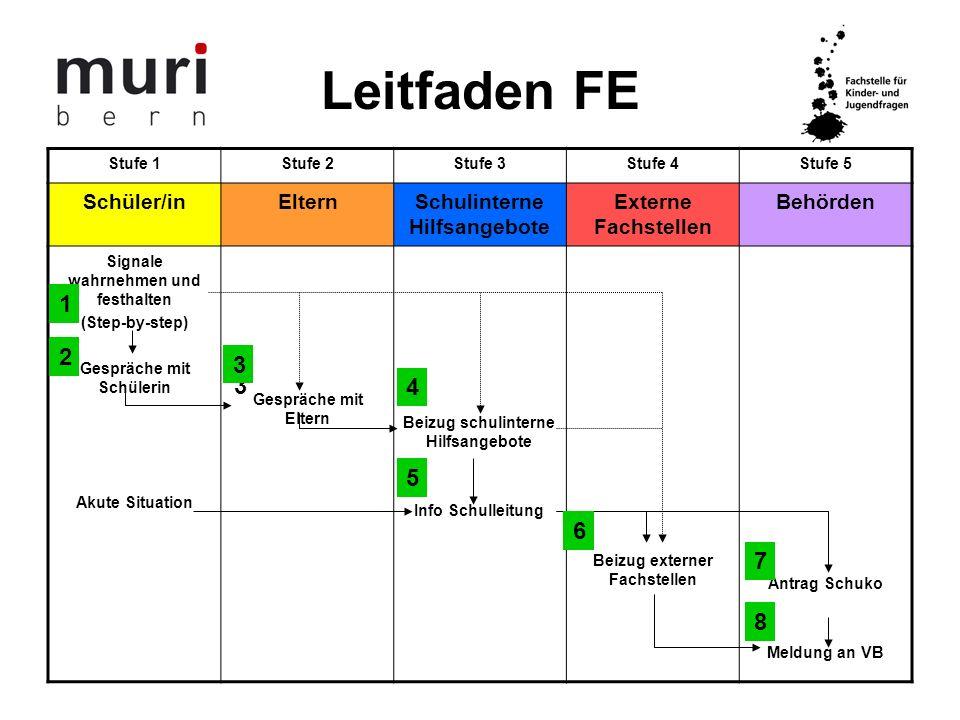 Leitfaden FE 1. 2a 2b 3a 3b 4. 5. 6. 7. 8. Schüler/in Eltern