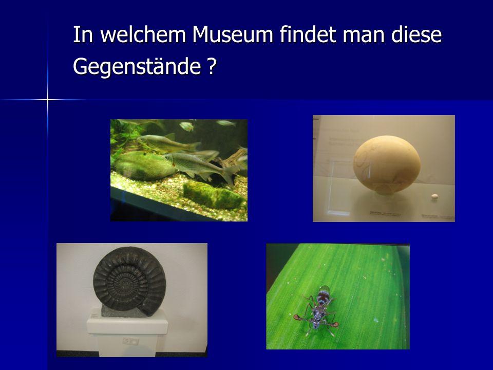 In welchem Museum findet man diese
