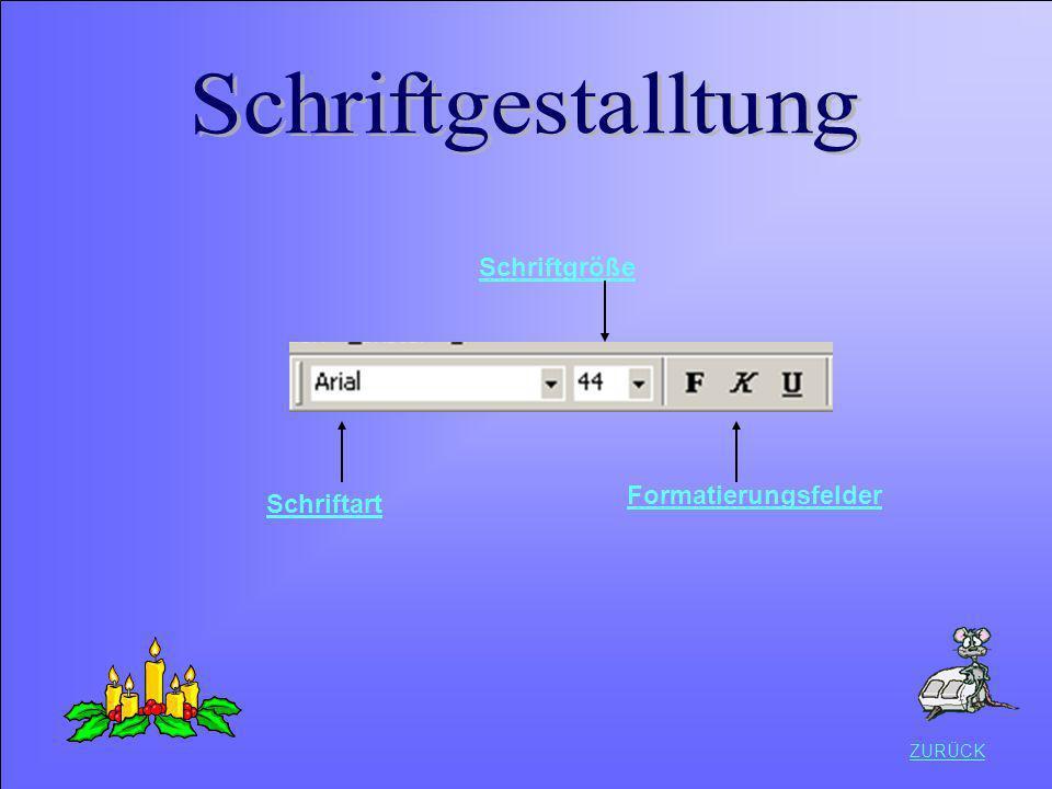 Schriftgestalltung Schriftgröße Formatierungsfelder Schriftart ZURÜCK