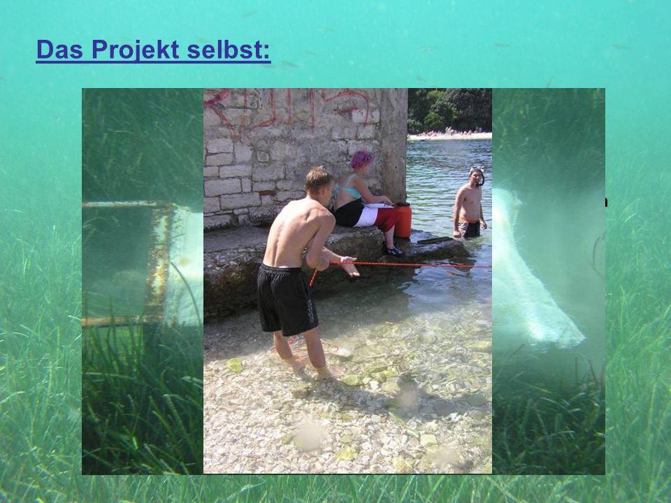 Das Projekt selbst: Gruppe 3: Dretsche: Aufgaben: