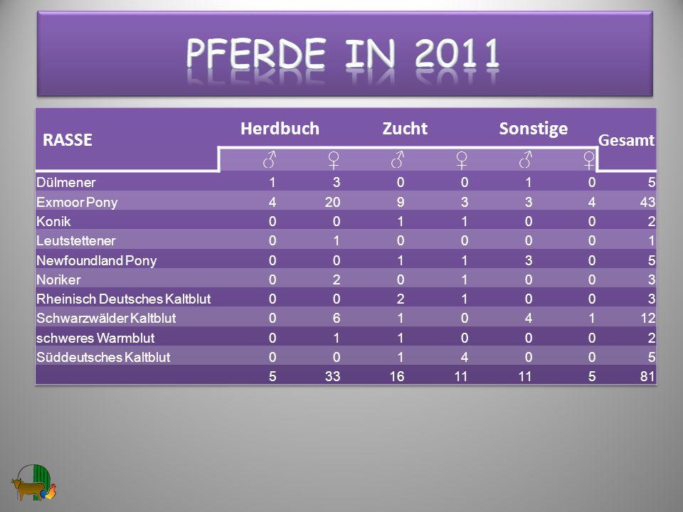 Pferde in 2011 RASSE Herdbuch Zucht Sonstige ♂ ♀ Gesamt Dülmener 1 3 5