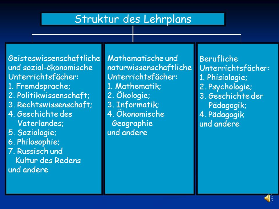 Struktur des Lehrplans