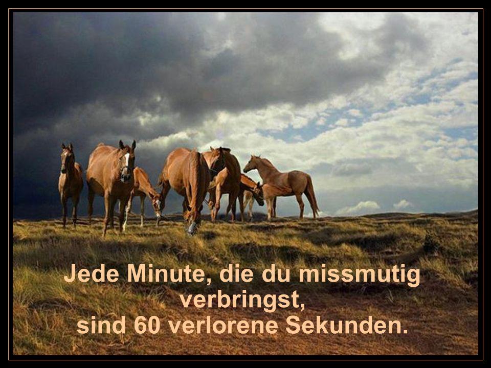Jede Minute, die du missmutig verbringst, sind 60 verlorene Sekunden.