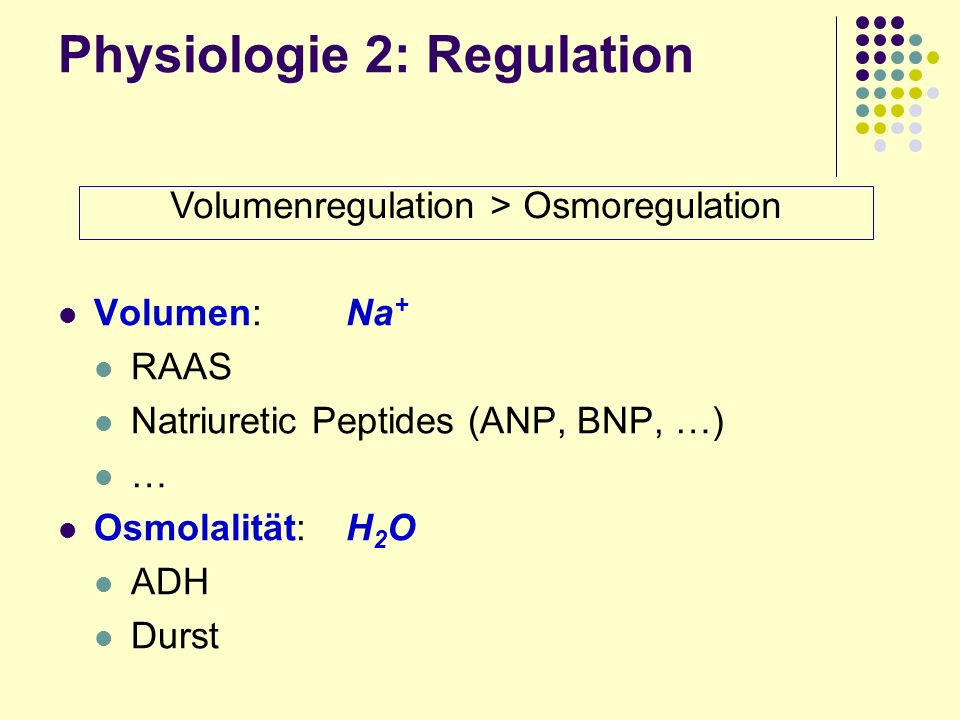 Physiologie 2: Regulation