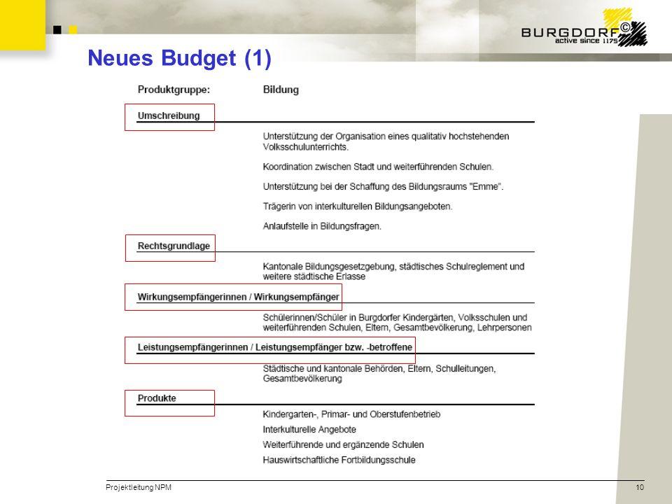 Neues Budget (1) Projektleitung NPM