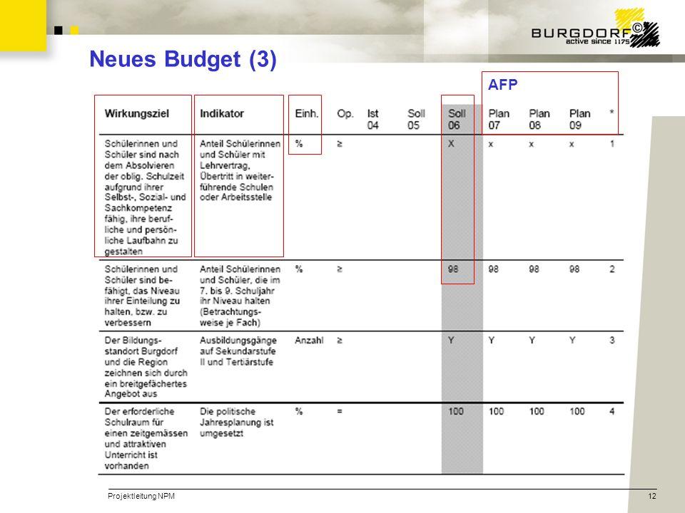 Neues Budget (3) AFP Projektleitung NPM
