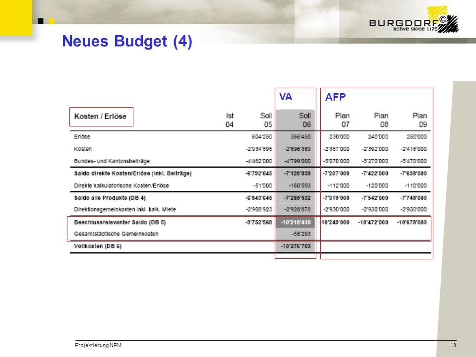 Neues Budget (4) VA AFP Projektleitung NPM