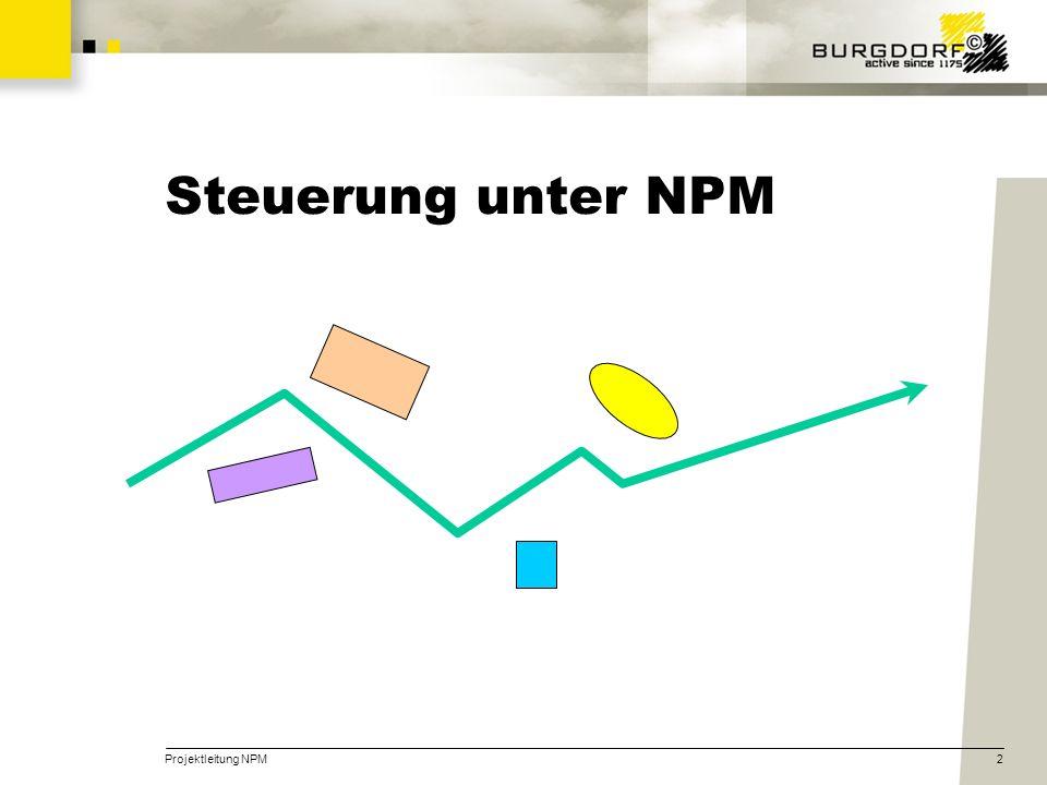 Steuerung unter NPM Projektleitung NPM