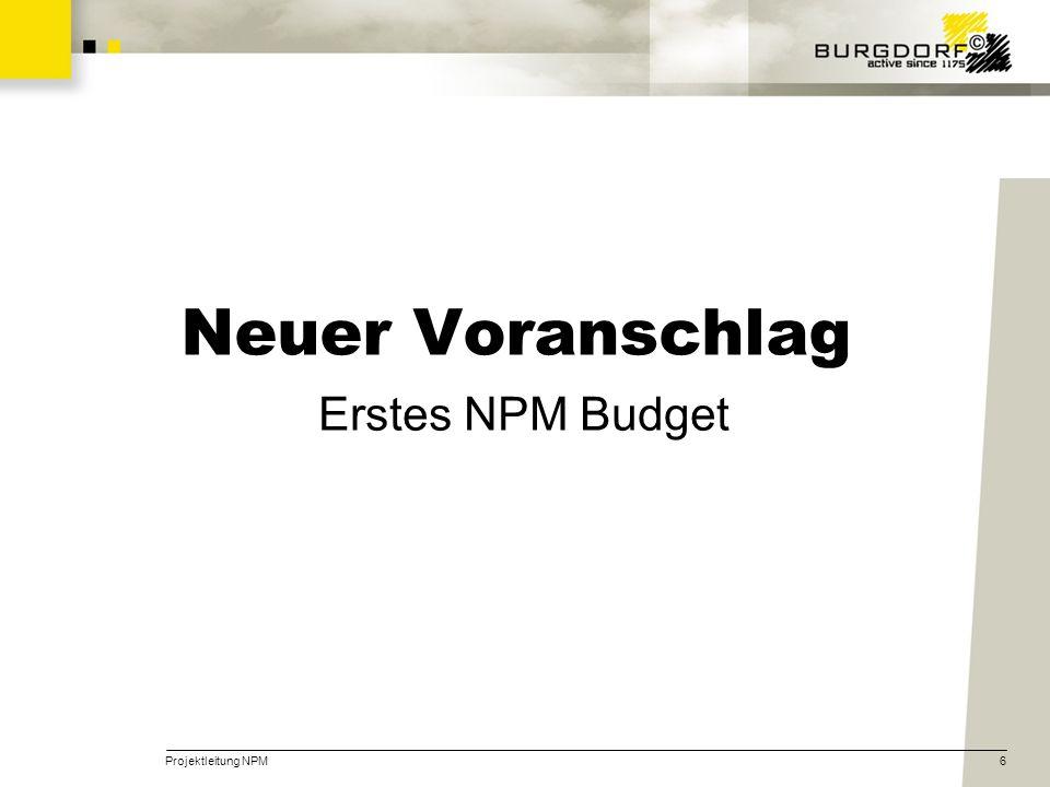 Neuer Voranschlag Erstes NPM Budget Projektleitung NPM