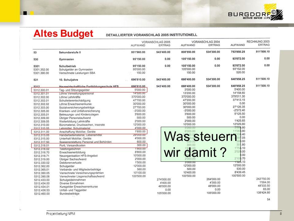 Altes Budget Was steuern wir damit Projektleitung NPM