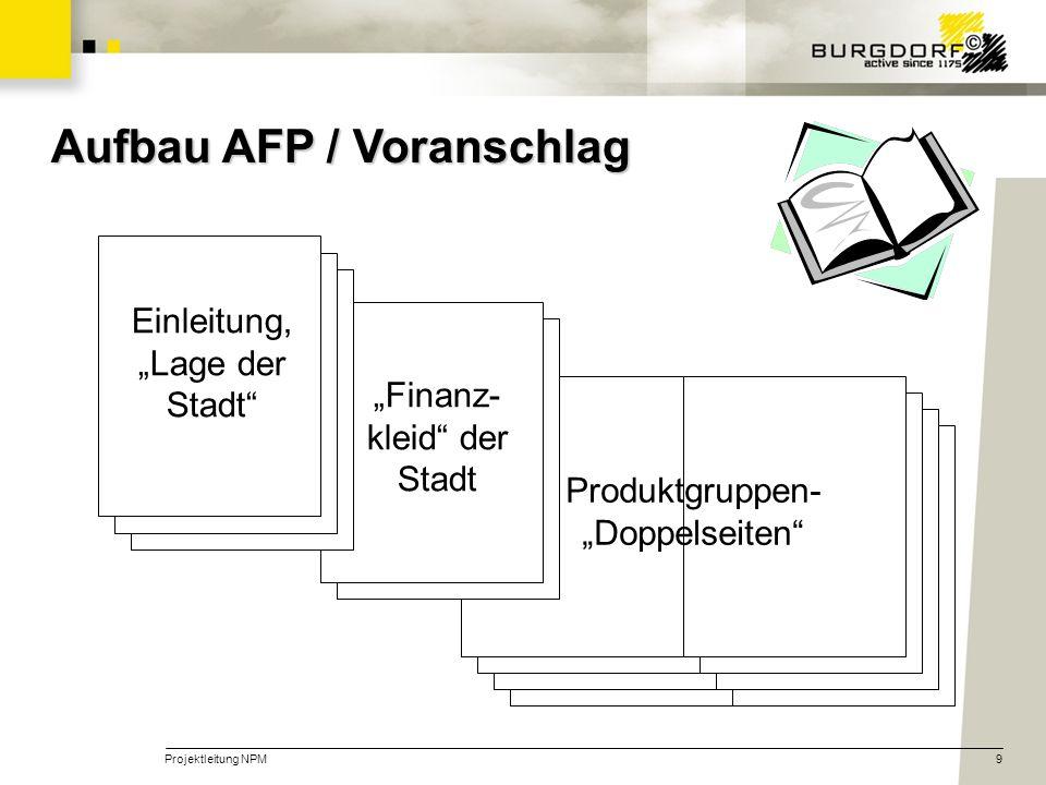 Aufbau AFP / Voranschlag