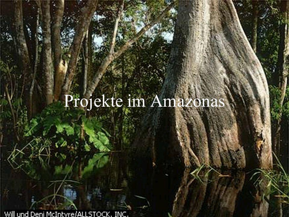 Projekte im Amazonas