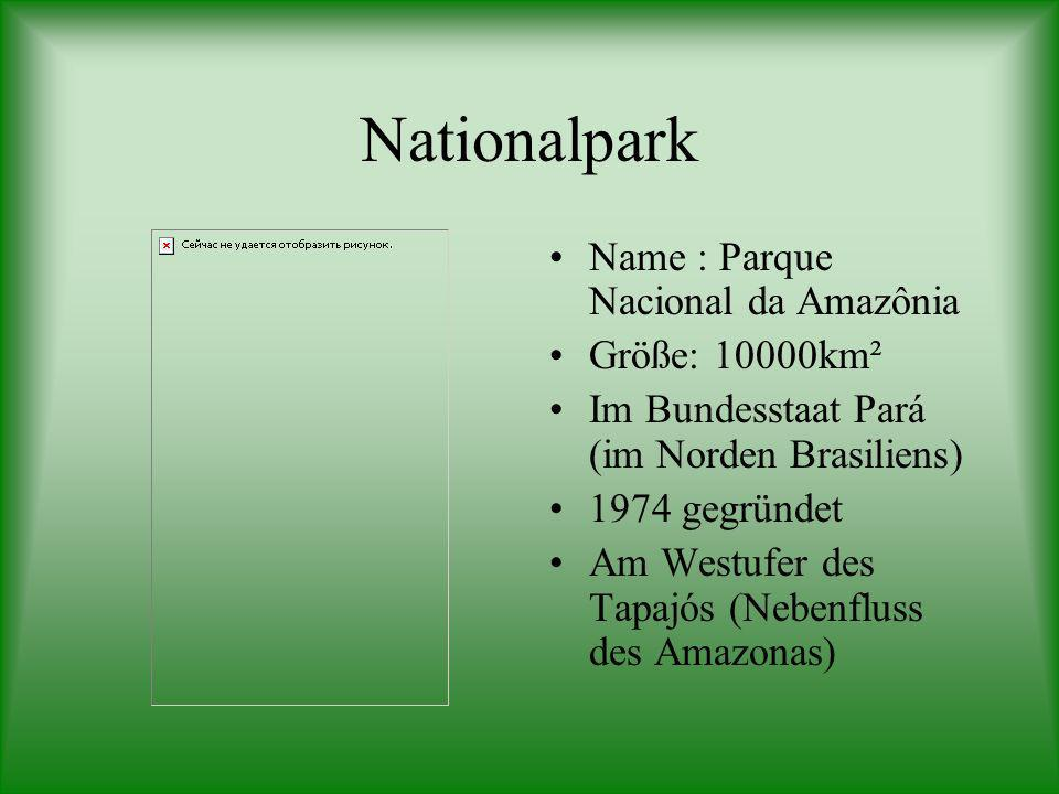 Nationalpark Name : Parque Nacional da Amazônia Größe: 10000km²