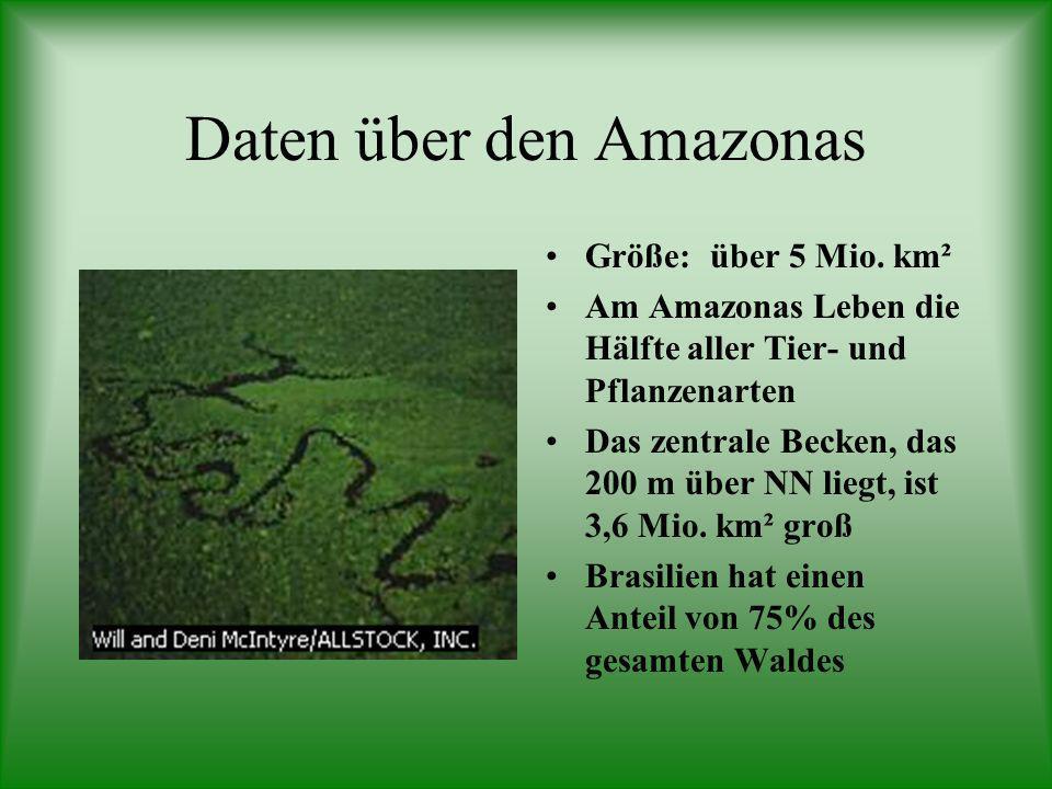 Daten über den Amazonas