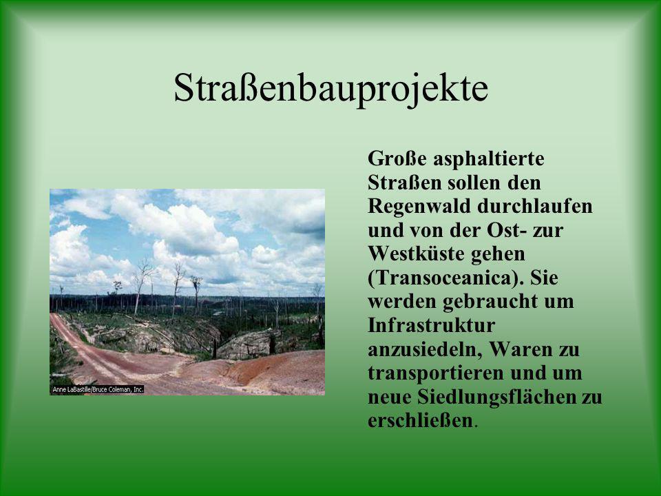 Straßenbauprojekte