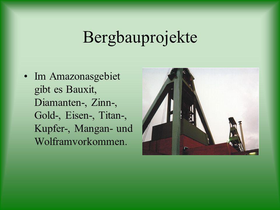 Bergbauprojekte Im Amazonasgebiet gibt es Bauxit, Diamanten-, Zinn-, Gold-, Eisen-, Titan-, Kupfer-, Mangan- und Wolframvorkommen.