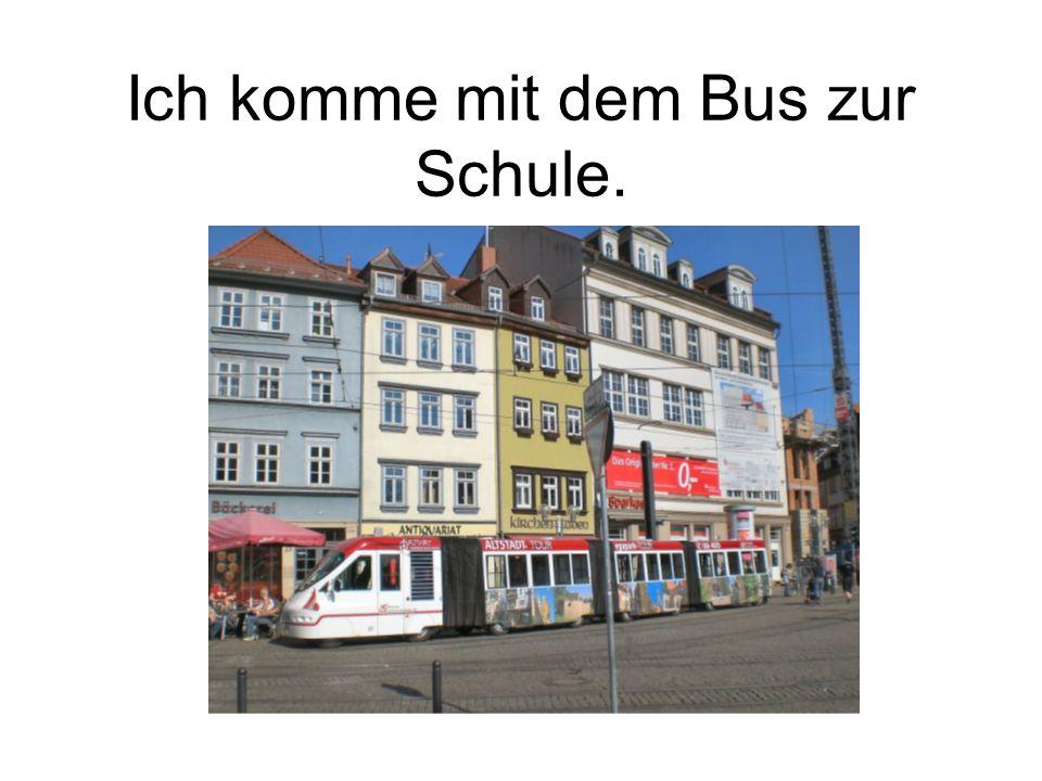 Ich komme mit dem Bus zur Schule.