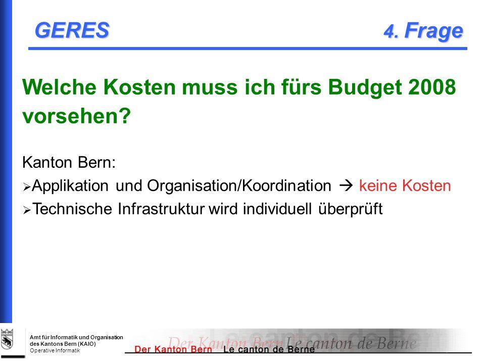 Welche Kosten muss ich fürs Budget 2008 vorsehen