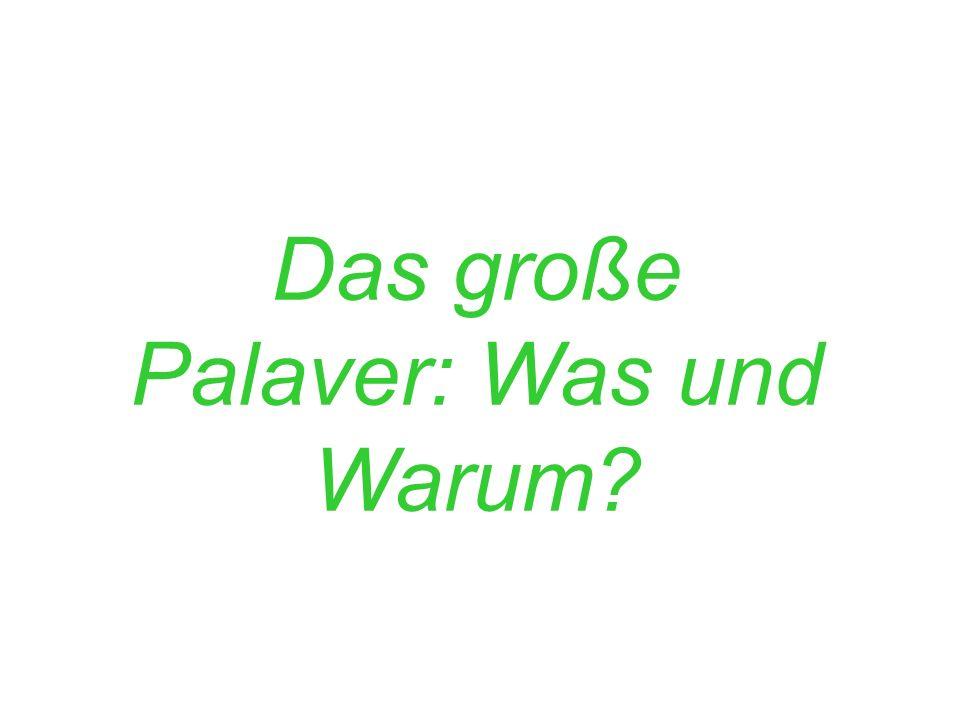Das große Palaver: Was und Warum