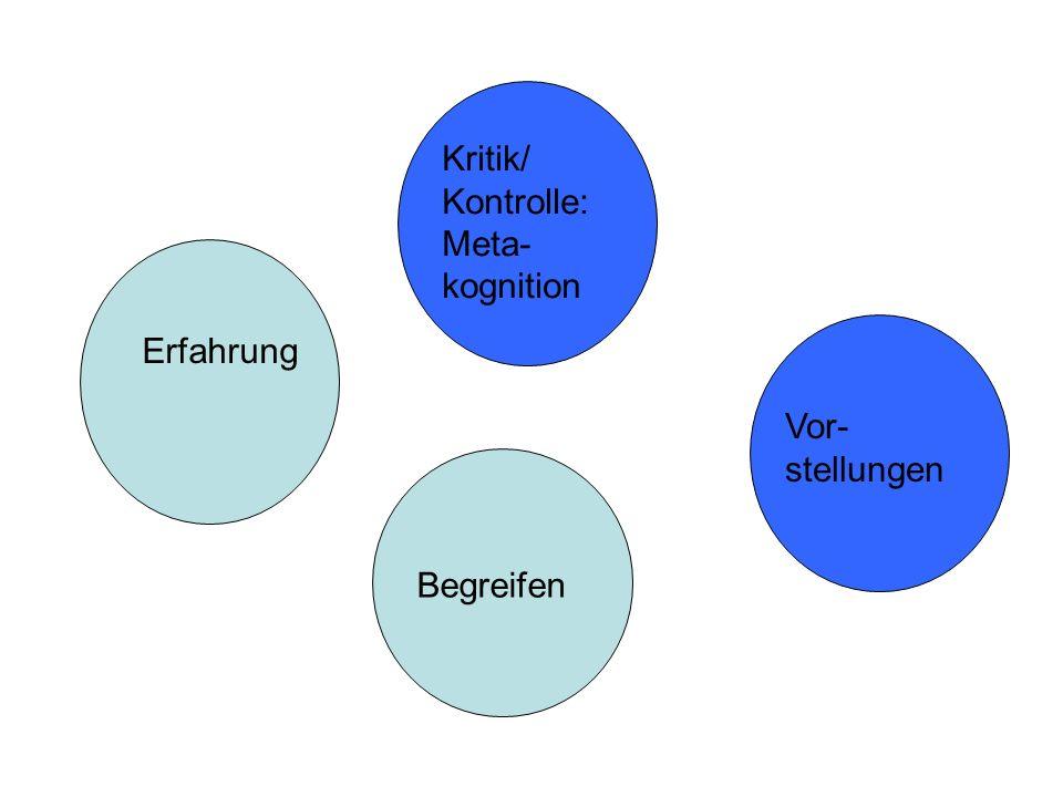 Kritik/ Kontrolle:Meta-kognition
