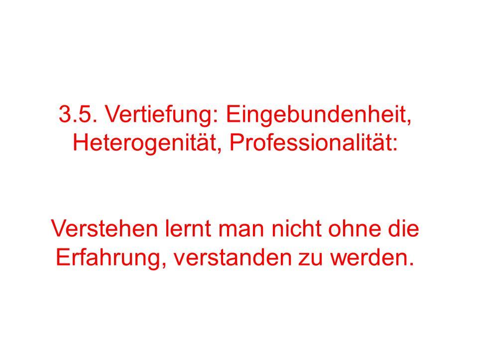 3.5. Vertiefung: Eingebundenheit, Heterogenität, Professionalität: