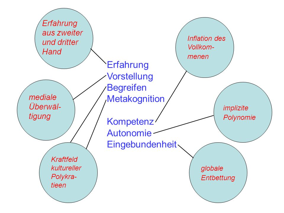 Erfahrung Vorstellung Begreifen Metakognition Kompetenz Autonomie