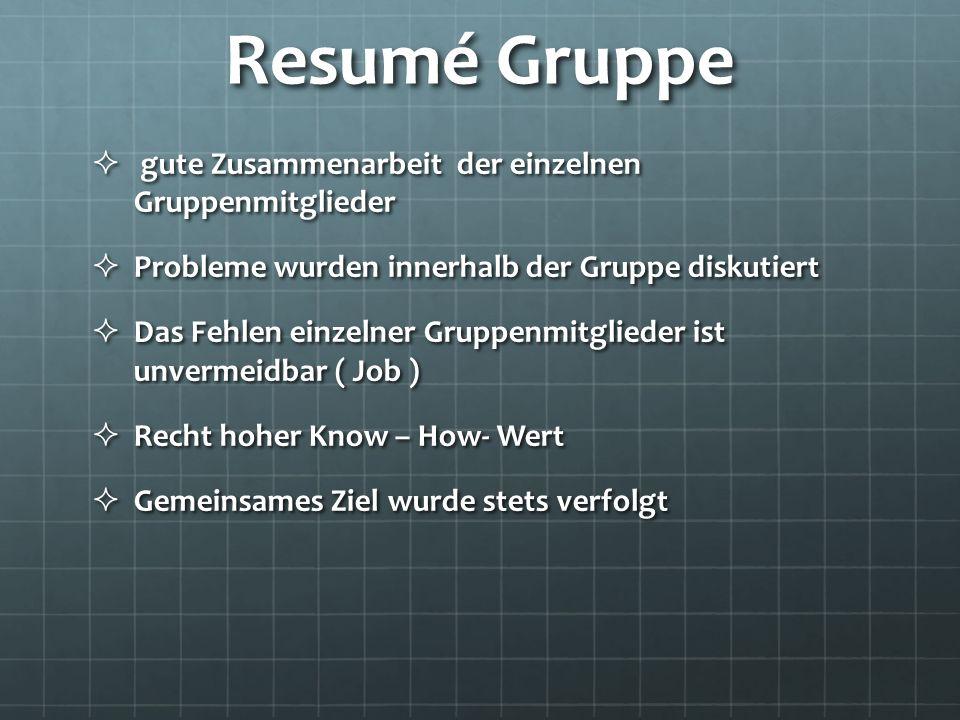 Resumé Gruppe gute Zusammenarbeit der einzelnen Gruppenmitglieder