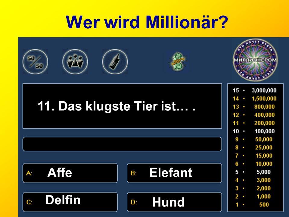 Wer wird Millionär 11. Das klugste Tier ist… . Affe Elefant Delfin