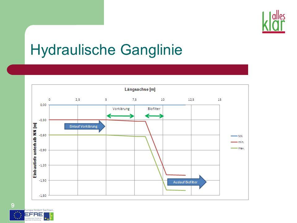 Hydraulische Ganglinie