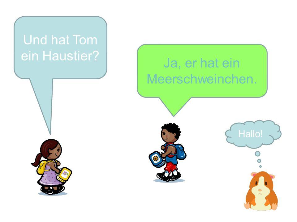 Und hat Tom ein Haustier