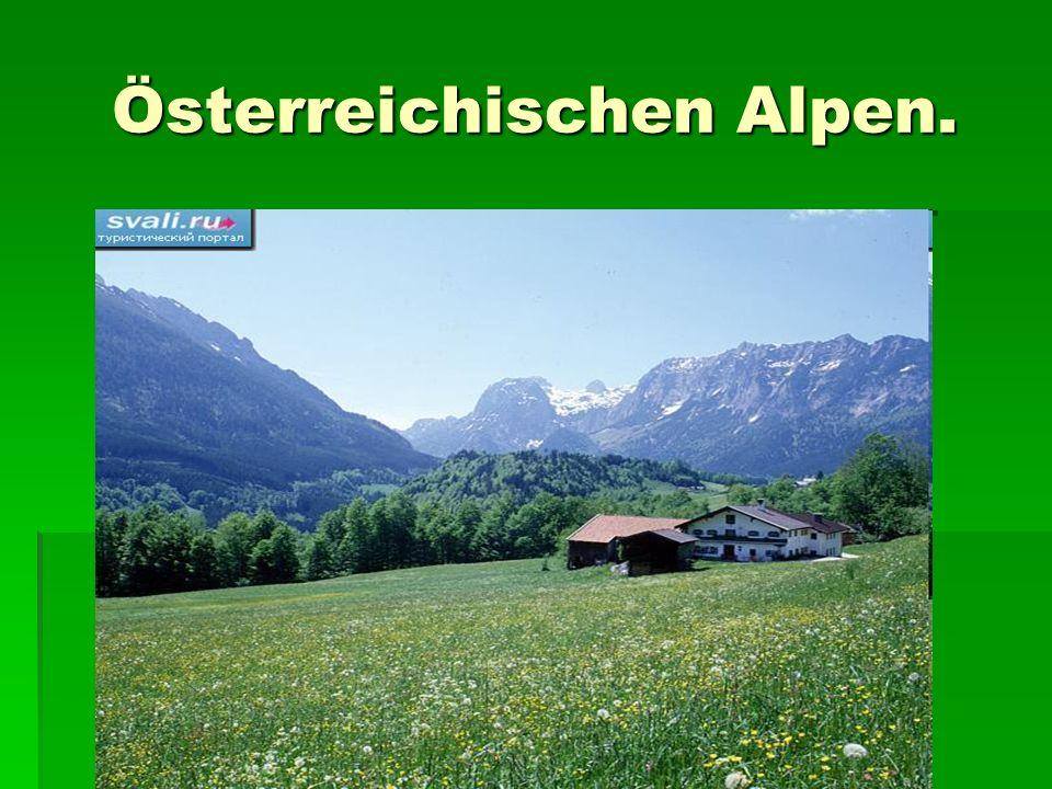 Österreichischen Alpen.