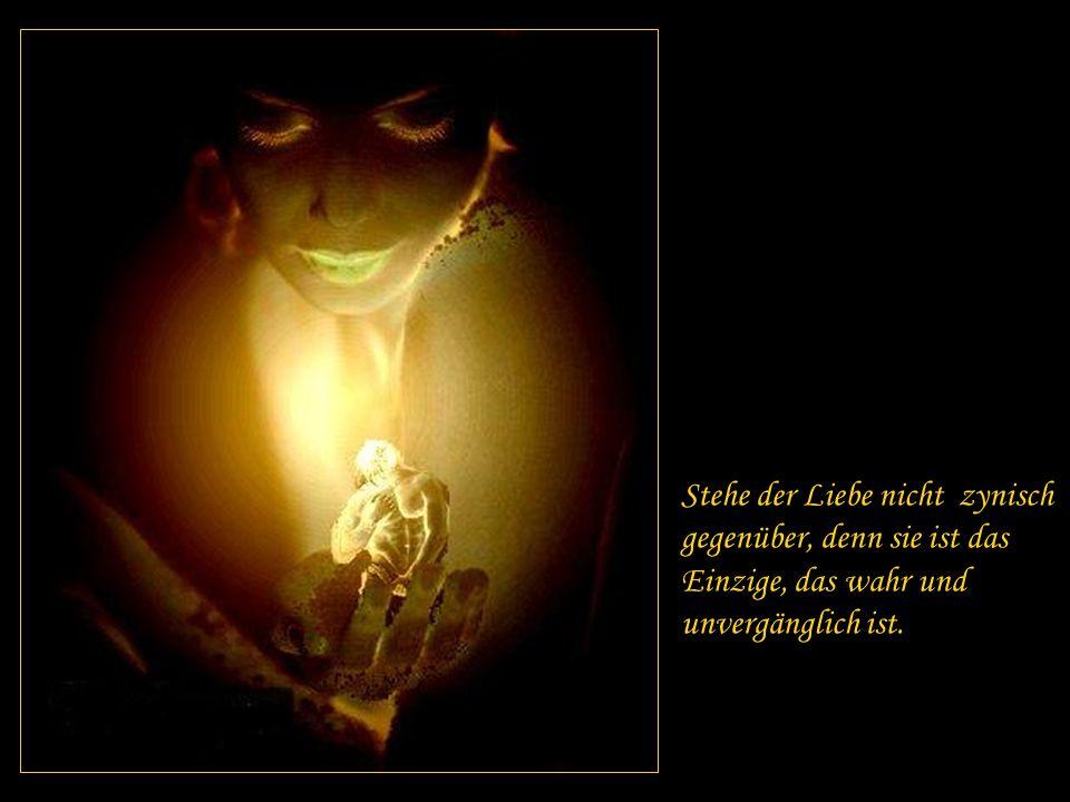 Stehe der Liebe nicht zynisch gegenüber, denn sie ist das Einzige, das wahr und unvergänglich ist.