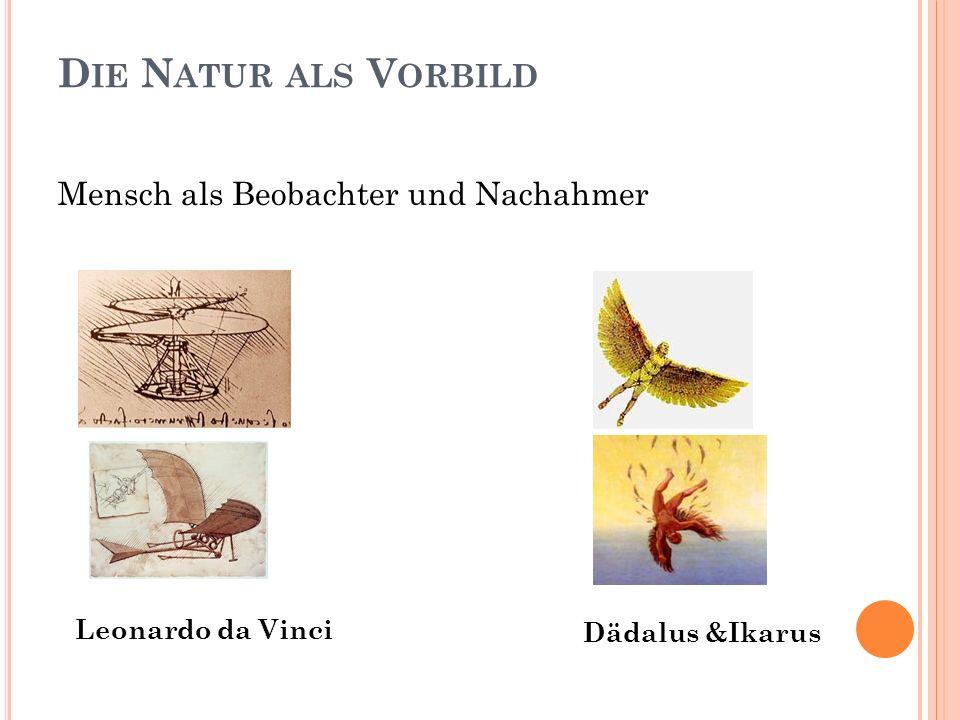 Die Natur als Vorbild Mensch als Beobachter und Nachahmer